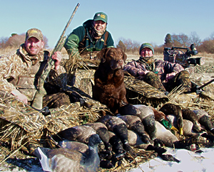 Sea Duck Hunting Guides Maine, Massachusetts, Rhode Island, Northeast